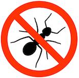 control bugs naturally