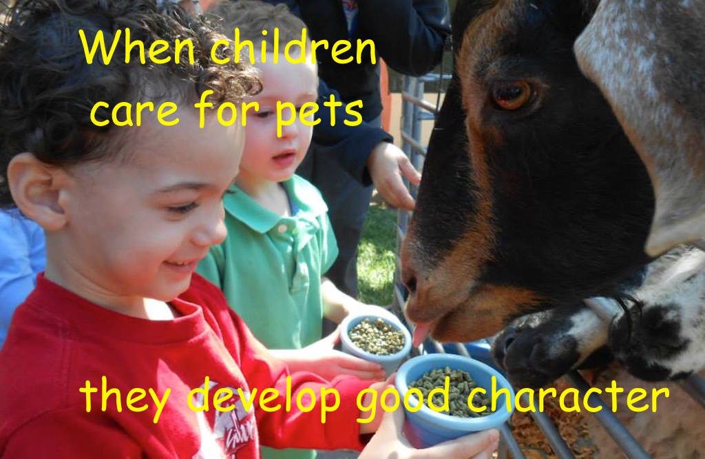 Pets help children learn to be responsible