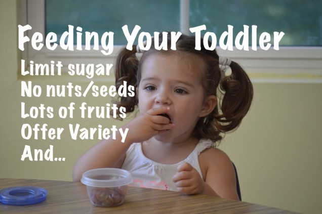 How to feed your 12-24 month old toddler