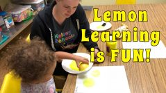 Learning with Lemons