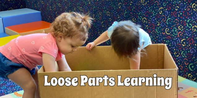 Learning with boxes